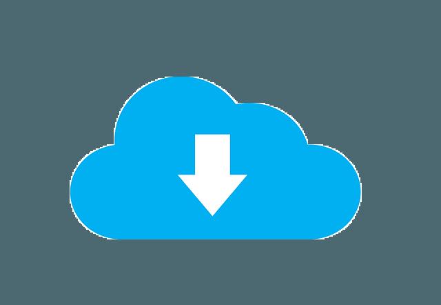 Wallet back-up - Wallet back-up - cloud download icon