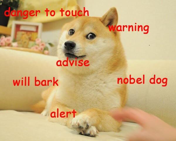 De Doge-meme - Dogecoin